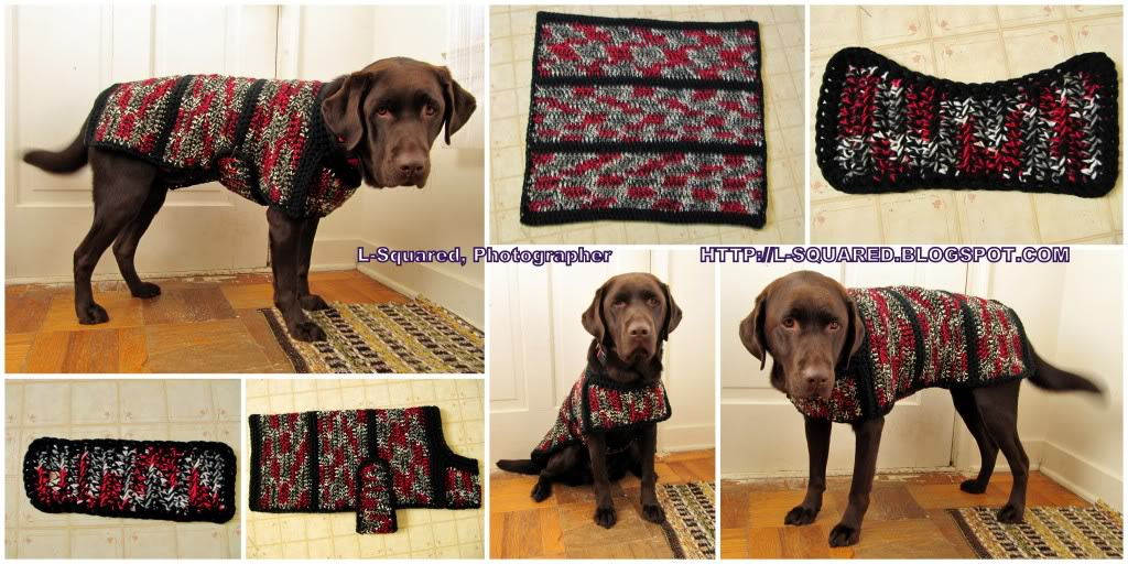 Double Knit Baby Patterns : The Best Sweaters and Coats to Crochet for your Dog   free patterns   Grandmo...